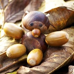 őszi dekoráció gesztenye bábu