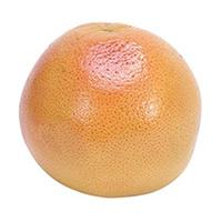 19-grapefruit