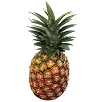 6h-ananasz