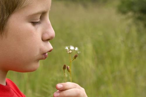 allergiás gyermek
