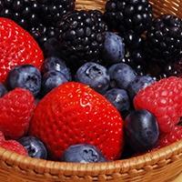 erdei gyümölcsök
