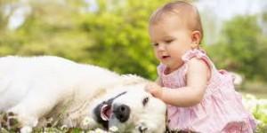 homeopátia gyerekeknek